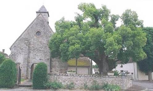 Postolle (La) - Eglise Saint-Joseph et Saint-Fiacre